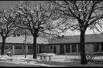 Snow in March - school