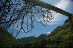 Ticino - twisted