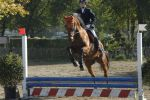 Sport - tiny jump