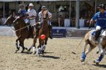 Polo Ascona - the ball