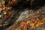 autumn in Ticino - natural water