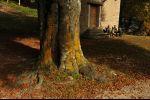 autumn in Ticino - Sosta