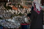 Istanbul 2011 - foulard and fish