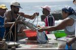 Cabo Verde - fish handover